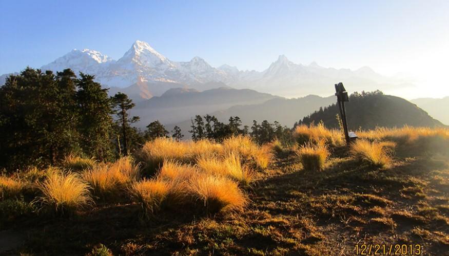 Mohare Danda Ghorepani Poon Hill Trek